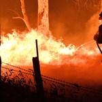 Egy nemzet lángokban – megállíthatatlan az ausztráliai bozóttűz
