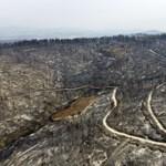 Ya se han quemado 100.000 hectáreas en Grecia, el primer ministro dice que esto es solo el comienzo