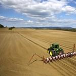 Botrányos földügy a Tisza mentén: három önkormányzat fut a földjei után