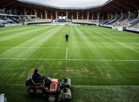 Bombameglepetés: a Felcsút megverte a Ferencvárost a bajnokságban