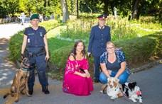 Kutyajogsit is kérhetnek a hatóságok a gazdiktól Bécsben