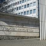 Pénteken dönthetnek a PTE sorsáról, a rektor a modellváltás kezdeményezését javasolja