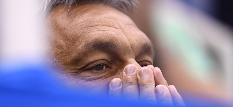 Komoly honoráriumot kaptak az Orbán Viktort tankönyvbe rakó szerzők