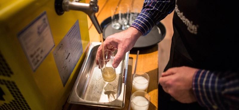 Tudja, hogy mitől fáj a feje, ha sört iszik?