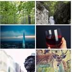 Ne keressen tovább: egy helyen a legjobb, legálisan letölthető fotókat tartalmazó oldalak
