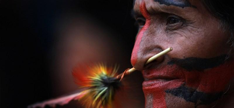 Ősi indián nyílmérget loptak a tolvajok, akik elemelték a múzeum széfjét