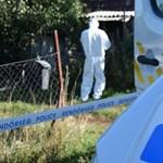 Őrizetben a várpalotai kettős gyilkosság gyanúsítottja - brutális kegyetlenséggel ölt
