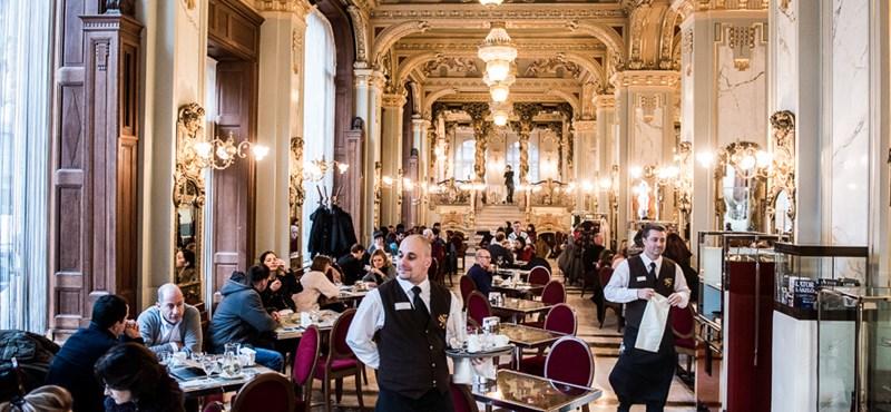 Mivé lettek Budapest irodalmi kávéházai? Megnéztük