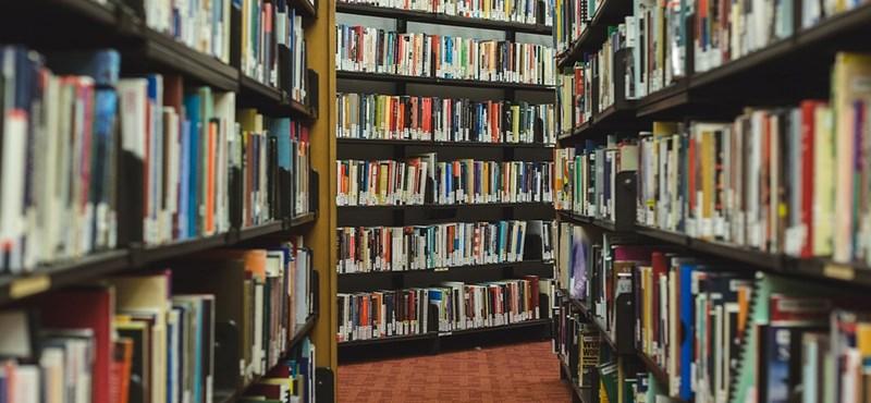 Kétperces irodalmi teszt: felismeritek ezeket a magyar verseket?