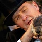 Előbújt az amerikai időjós mormota, és meglátta az árnyékát