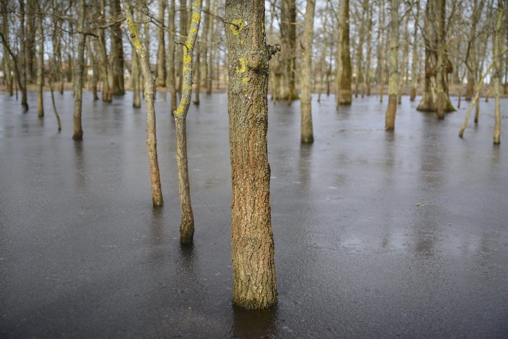 mti.15.02.09. - Megfagyott erdei belvíz Bihartorda határában. A térségben több mint 125 ezer hektárnyi területen áll a belvíz, tíz vízügyi igazgatóság területén negyvenhat belvízvédelmi szakaszon rendeltek el készültséget. - 7képei
