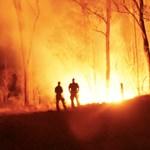 Kitalálták, hogyan lehet a fellobbanás után egy órán belül eloltani egy bozóttüzet