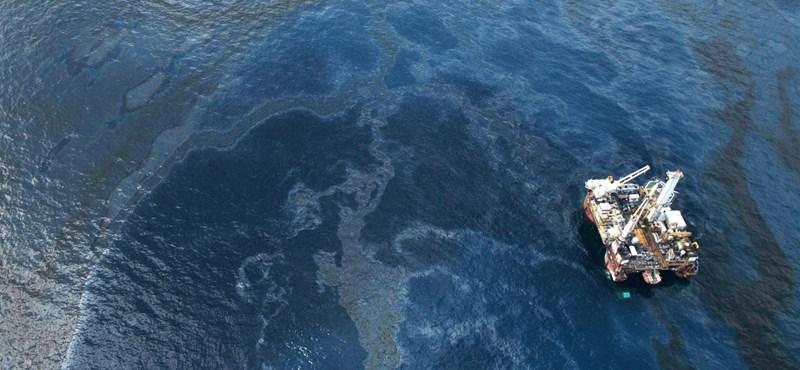 Keresőmotoros imázsjavító akcióba kezdett a BP