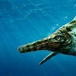 Gigantikus méretű halgyíkok éltek egykor a tengerekben