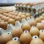Az élelmiszer-rezsicsökkentésről vitázik a parlament pénteken