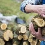 Egymilliárd forinttal emelik a szociális tűzifa támogatást