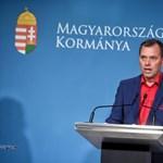 Szlávik: Nem valószínű, hogy kötelező lesz a koronavírus elleni oltás