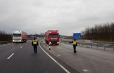 833 szabálytalankodó teherautóst és buszsofőrt csíptek el a rendőrök egy hét alatt