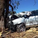 Csúnyán végezte a fának csapódó autós drogcsempész - fotók