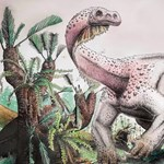 Egy teljesen új dinófajt fedeztek fel Dél-Afrikában