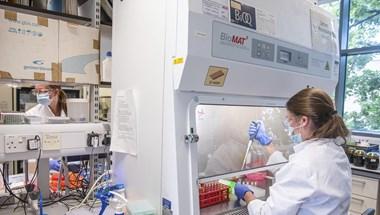 Verseny a koronavírus-vakcinákért: elkezdődött, amitől sokan féltek