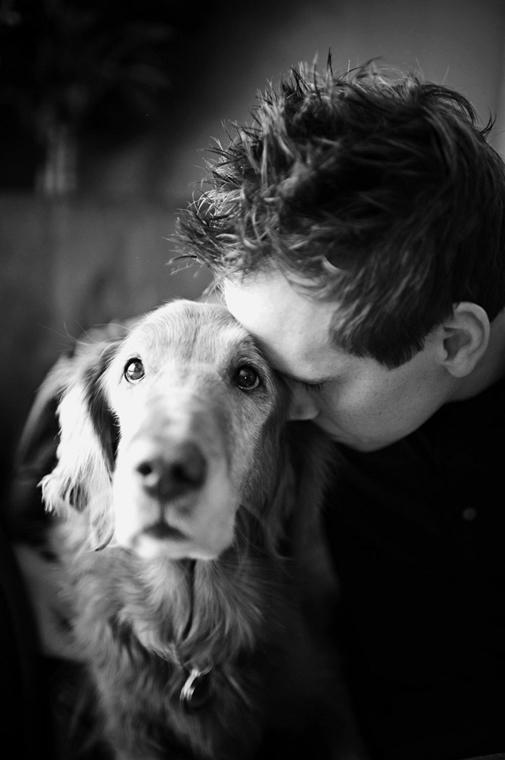 NE használd, nagyításhoz kértük!!! - kutyák altatás előtt - sadie-trixie-44b