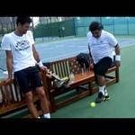 Maradonával viccelődött Gyokovics Dubajban