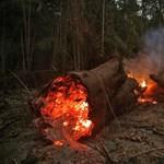 Négy önkéntes tűzoltóra próbálják ráverni az amazóniai gyújtogatásokat