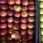 Vacak lesz az idei almatermés