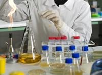 Az egyik legveszélyesebb kórokozó ellen találhattak hatékony ellenszert szegedi kutatók