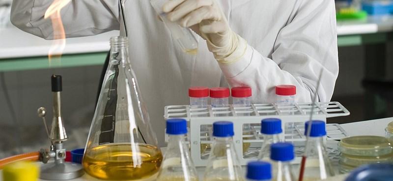 A kormány szerint nem okoz gondot a veszprémi labor bezárása