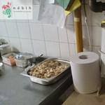 Elképesztően mocskos kínai éttermet záratott be a hatóság Zuglóban – fotók