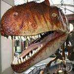 Extrém luxus: dinoszaurusz csontok, mint padlódíszek