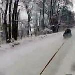 Őrült olimpia: 150-nel húzzák a szánkót az erdőben