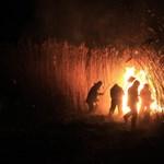 Öt hektáron lángol a nádas Demecser közelében