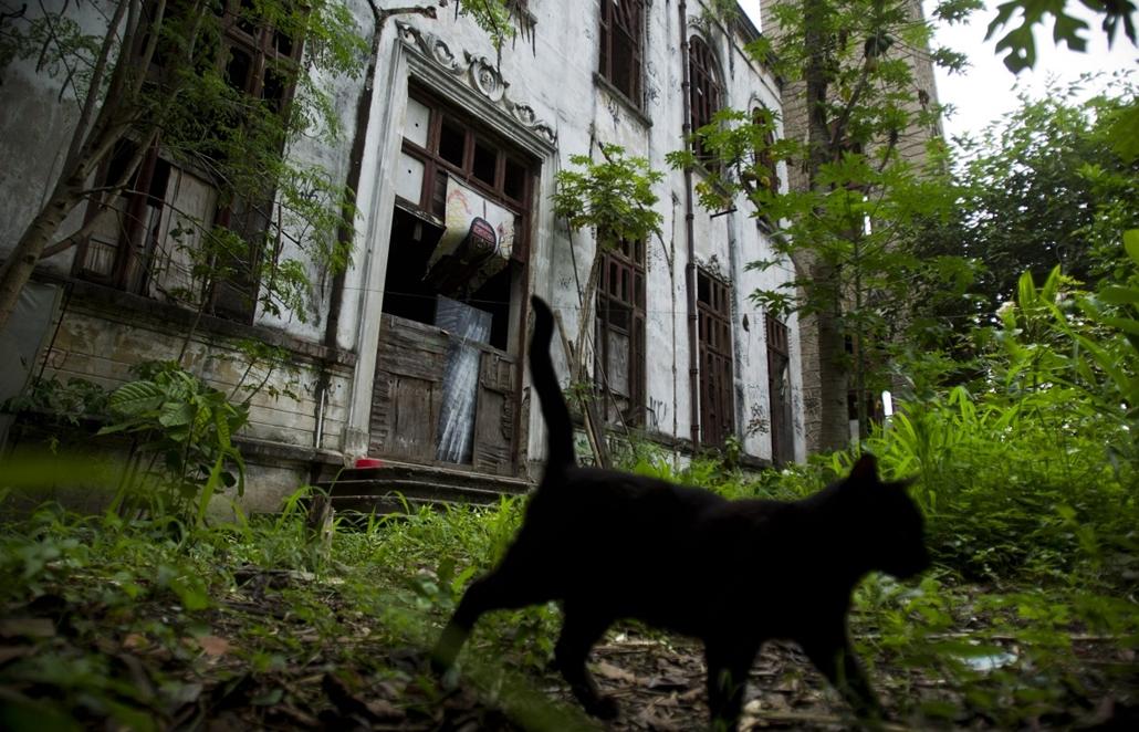 Kiűzetés Maracanaból - Nagyítás-fotógaléria
