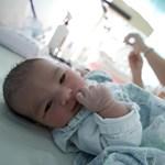 TASZ: Az anya választása és az újszülött érdeke legyen az elsődleges szempont!