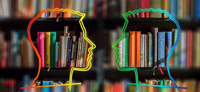 Nyelvtanulás otthonról? Ennyit kell fizetnetek az online tanfolyamokért