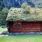 Az igazi zöldtetős ház