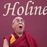 Még a dalai láma is Trumpot cikizi - videó