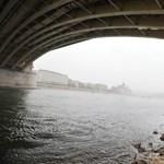 Százezer tonna kukoricát nem tudnak szállítani a Duna vízállása miatt