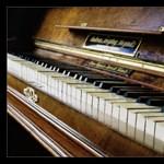 Taroltak a magyar zongoristák