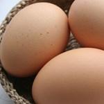 Megmondjuk, mire jó a maradék tojásfehérje - recept
