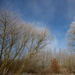 Felhő- és csapadékmentes hétvége jön, a szél azonban marad