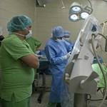 A világ élvonalában a Semmelweis Egyetem transzplantációs klinikája