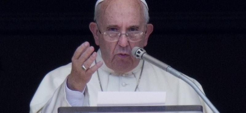 Ferenc pápa: meg kell gyónni a természetkárosítást