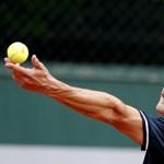 Kibékülne Babossal és Fucsoviccsal a teniszszövetség