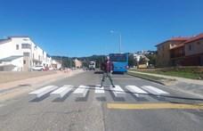Zebrafestésre kényszerítették Budakeszit
