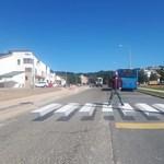 Rabosították a budakeszi iskolához zebrát festő momentumos képviselőt