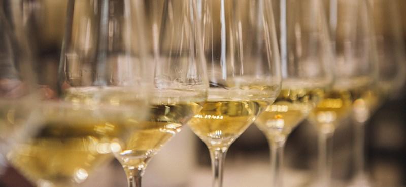 Tokaji Ősz – a legszebb borokkal